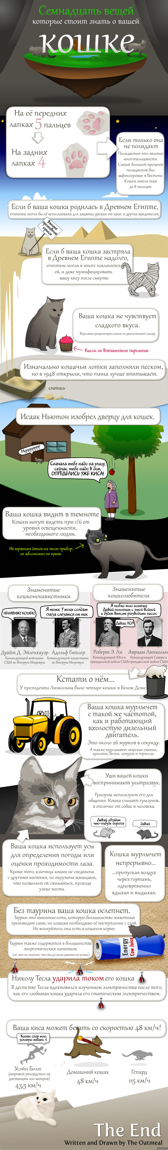 схема вязания кот ливерпуль