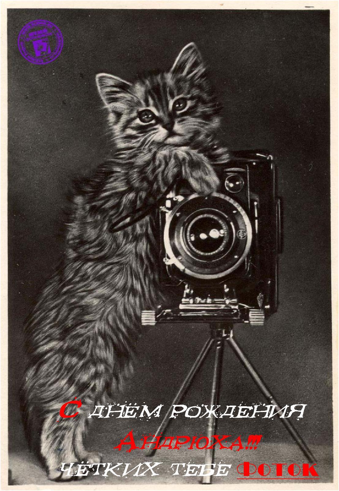 Открытка фотографу в день рождения, открытку отправить анимация